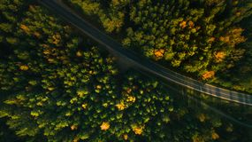 Mountain road and autumn trees above the forest. Yellow, red and green nature, high top view. Aerial drone shoot with wonderful te. Xture royalty free stock image