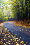 Mountain road in a beautiful autumn forest. Royalty Free Stock Photography