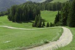 Mountain road, Dolomites. Mountain road through a green meadow and trees, Dolomites - Italy stock photos