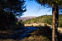 Mountain road in early spring, mount Stolovi Stock Photos