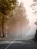 Mountain road and fog Stock Image