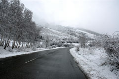 Mountain road with fog Royalty Free Stock Photography