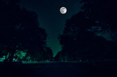 Mountain Road through the forest on a full moon night. Scenic night landscape of dark blue sky with moon. Azerbaijan. Long shutter. Mountain Road through the Stock Image