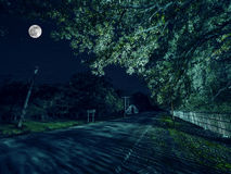 Mountain Road through the forest on a full moon night. Scenic night landscape of dark blue sky with moon. Azerbaijan. Long shutter. Mountain Road through the Royalty Free Stock Photography