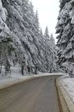 Mountain road by forest in winter,Rila mountain, Borovetz Royalty Free Stock Photography