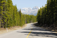 Mountain road in forests Stock Photo