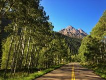 Mountain road. Going through a forest with a mountain peak in the background stock photo