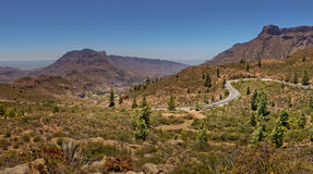 Mountain road in Gran Canaria Stock Photography