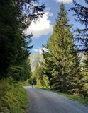 Alpine mountain road with solitary hiker in distance Stock Photography