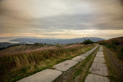 Mountain road. Incarpatian mountains Ukraine Stock Photos