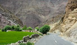 Mountain road in Ladakh, North of India royalty free stock photos