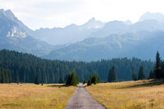 Mountain road landscape. Idyllic and scenic mountain landscape with road in the center surrounded with meadows, pine trees and big mountains in the background stock photos