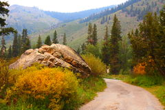 Mountain Road at Mineral King, Sequoia National Park Royalty Free Stock Images