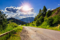 Mountain road near the coniferous forest with cloudy morning sky Stock Photography