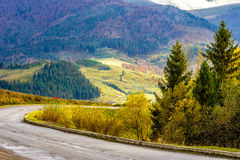 Mountain road near the coniferous forest with cloudy morning sky. Empty asphalt mountain road with Painted single white Line near the coniferous forest with stock photo