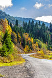 Mountain road near forest. Empty asphalt road the coniferous forest in mountains stock photography