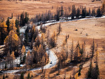 Mountain road next to an alpine torrent in fall. Stock Image