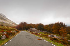 Mountain road and old hut, surrounded by trees in autumn Stock Photo