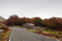 Mountain road and old hut, surrounded by trees in autumn Royalty Free Stock Images