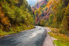 Mountain road in Parang, Romania Stock Image