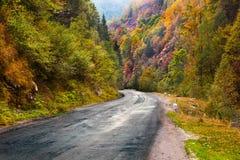 Mountain road in Parang, Romania Stock Image