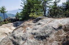 Mountain road of pilgrimage to the Tiger Nest Taktshang monastery, Bhutan Stock Image