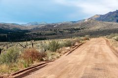 Mountain road through previously burned area stock image