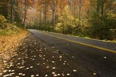 Mountain Road in the Rain. A beautiful mountain road in the Fall rain Royalty Free Stock Photos