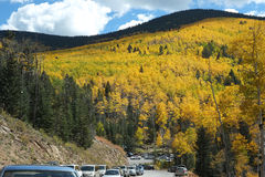 Mountain Road in Santa Fe Aspen Forest Royalty Free Stock Photography