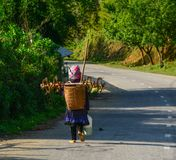 Mountain road of Sapa, Vietnam