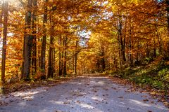 Mountain road in the Slovak paradise national park, on a Beautiful Autumn clear day. Changing Season concept. Beautiful mountain road in the Slovak paradise royalty free stock photography