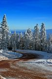 Mountain Road with Snow and Trees Royalty Free Stock Image
