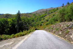 Mountain road in summer Royalty Free Stock Images