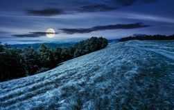 Mountain road in to the beech forest at night. In full moon light. Svydovets mountain ridge in the distance. stunning landscape of Carpathian mountains, Ukraine Stock Photos