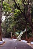 The mountain road Stock Photo