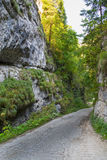 Mountain road  between two rocks. Curvy road and rocks in Dambocioara Gorges, Romania Royalty Free Stock Photo