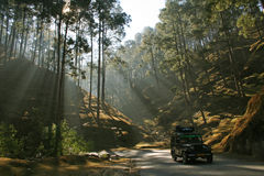 Mountain road in uttaranchal Royalty Free Stock Photos