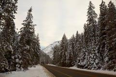 Mountain Road in Winter. North Cascades, Washington, USA Stock Image