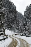 Mountain road in winter. With snow Royalty Free Stock Photography