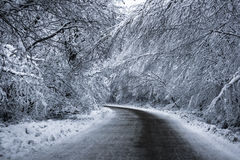 Mountain Road in the Witner. Just a hard for travel road in the winter Royalty Free Stock Images