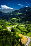 Mountain Roads and Forest Stock Image