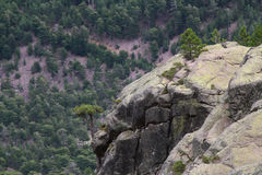 Mountain rock formation on hiking trail, Corse, France. Royalty Free Stock Photos