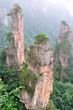 Mountain and rocks. Mountain and featured rocks in light fog, locate in Southern of China, Zhangjiajie, Hunan province Stock Images