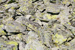 Mountain rocks with green lichens texture. Texture of big rocks with green lichens scattered on mountain plateau Stock Photo