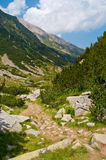 Mountain Rocky Path Stock Image