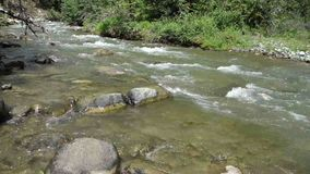 Mountain run-off in the springtime. Cold water swirling around rocks at a gold-bearing creek in northern bc stock footage