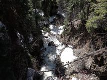 Mountain run-off in the springtime. Ice and snow melting in the rockies stock footage