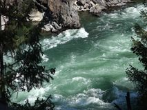 Mountain run-off in the springtime. Water rushing through a canyon in the rockies stock video