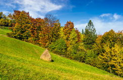 Mountain rural area in autumn. Season. agricultural field with haystack on a hill near the forest with red foliage. beautiful and vivid landscape Stock Images