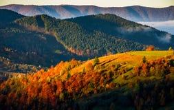 Mountain rural area in foggy autumn morning Stock Photos